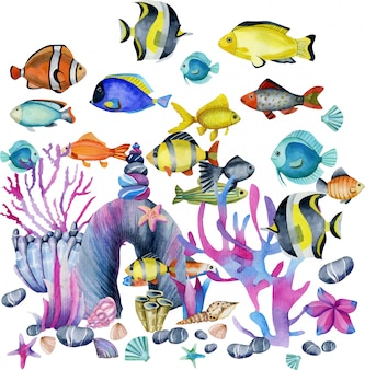 Watercolor oceanic tropical exotic fishes illustration