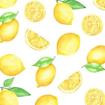 レモンスライスパターンの柑橘系の果物の水彩画