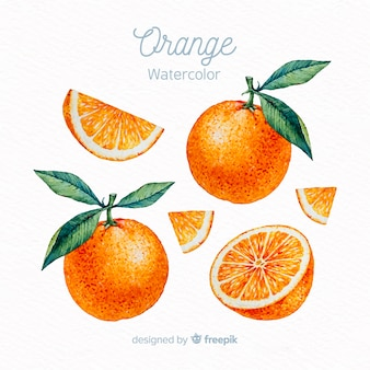 Watercolor orange set