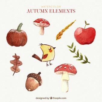 秋の水彩画パック