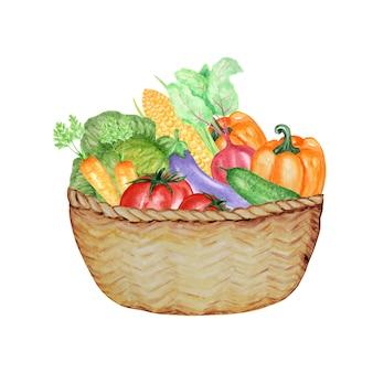 籐のバスケットの野菜の水彩画のコレクション。手描きの生鮮食品のデザイン要素。