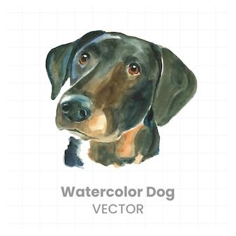 흰색 바탕에 강아지의 수채화 그림