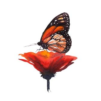 나비에 붉은 꽃의 수채화 그림
