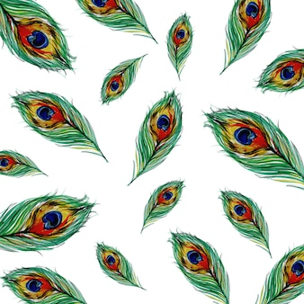 watercolor Peacock feathers  background
