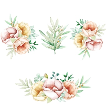 Watercolor peonies flowers set