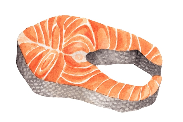 Watercolor piece of red fish salmon or salmon