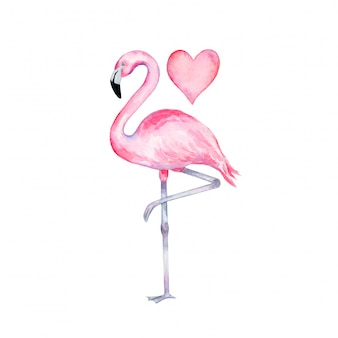 Watercolor pink flamingo standing on one leg with a heart