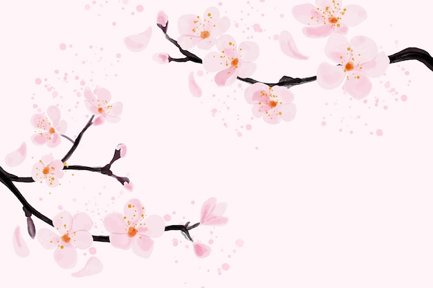 Watercolor pink flower plum blossom background