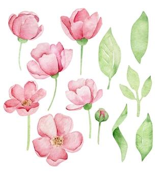 水彩ピンクの花と緑の葉セット