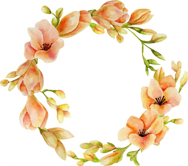 Watercolor pink freesia flowers wreath