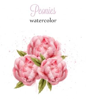 Watercolor pink peonies