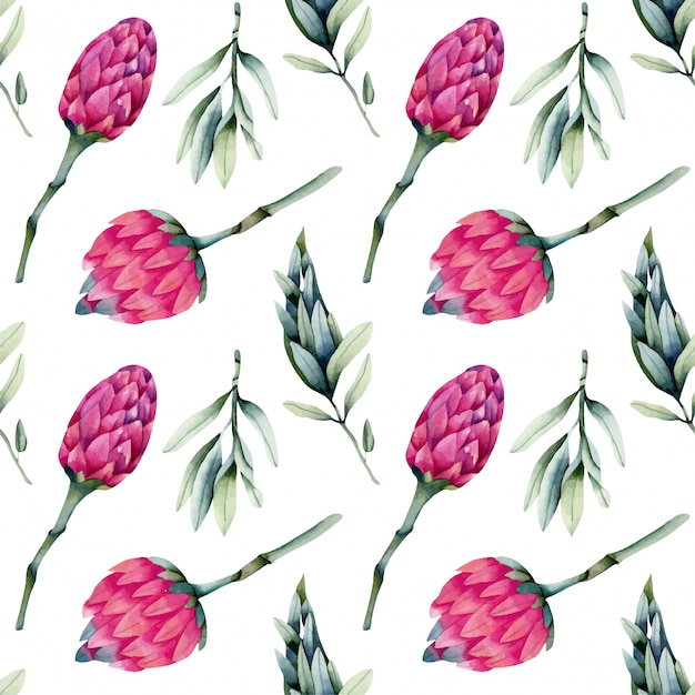 Watercolor pink protea flowers, green branches seamless pattern