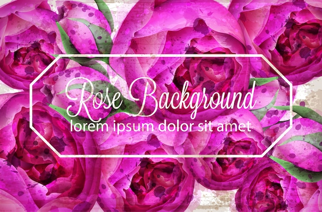 Watercolor pink wild roses