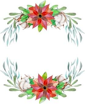 Акварель пуансеттия и хлопковые цветы