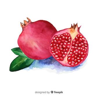 수채화 석류 배경