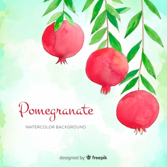 Watercolor pomegranate background