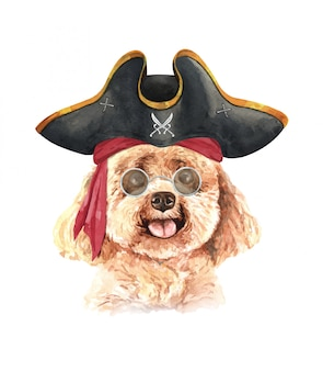Watercolor poodle with sunglasses and pirate hat.