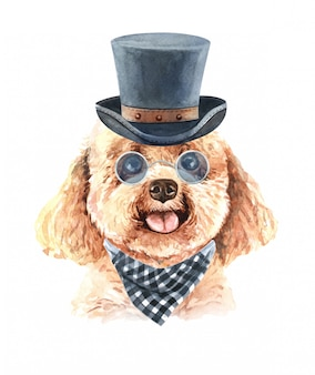 Watercolor poodle with sunglasses plaid scarf and top hat.