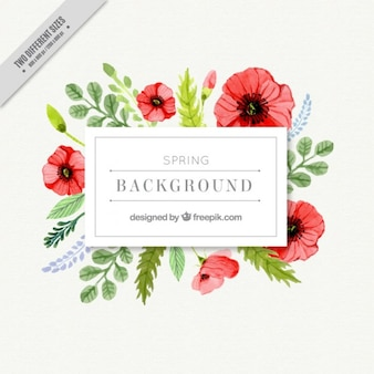 Watercolor poppies floral label