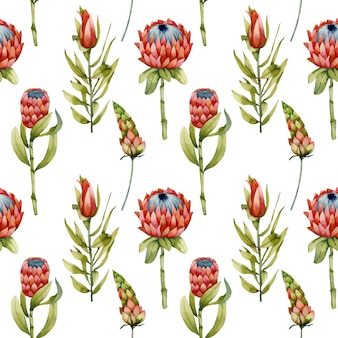 Watercolor protea flowers, green branches and leaves seamless pattern