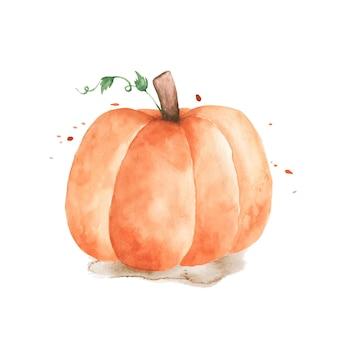 Акварельная иллюстрация тыквы. оранжевая тыква с ручной росписью на белом фоне. идеально подходит для оформления декоративных на осеннем фестивале поздравительных открыток, приглашений, постеров.