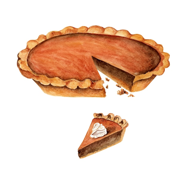 Watercolor pumpkin pie