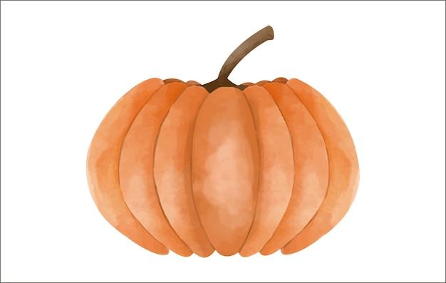 Watercolor pumpkin