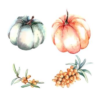 Watercolor pumpkins and sea buckthorn