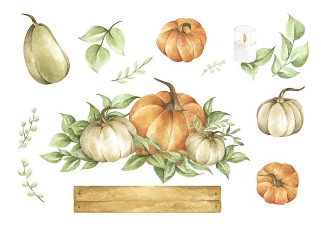 Watercolor pumpkins set. autumn decoration floral design. botanical illustration. thanksgiving card.