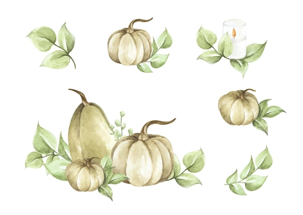 水彩カボチャセット。秋の装飾花柄。植物画。感謝祭のカード。 Premiumベクター