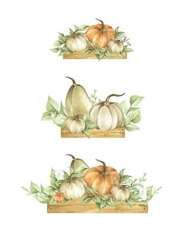 水彩カボチャセット。秋の装飾花柄。植物画。感謝祭のカード。
