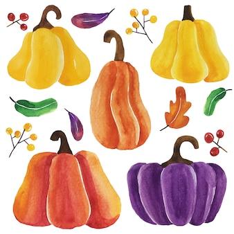 Watercolor pumpkins vector