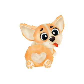Watercolor puppy corgi lies on its stomach isolated on white background. watercolor illustration