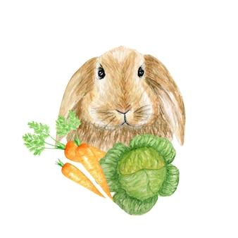 野菜ニンジンと水彩のウサギのイラスト