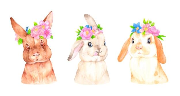 花のイラストと水彩ウサギ