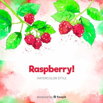 Watercolor raspberries background