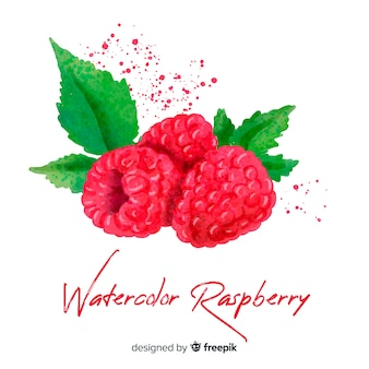 Watercolor raspberry background