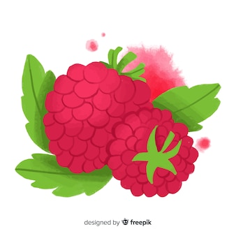 Watercolor raspberry