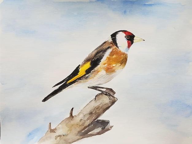 白い背景の上の水彩画のリアルな鳥