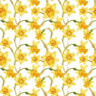 Watercolor realistic floral pattern with narcissus