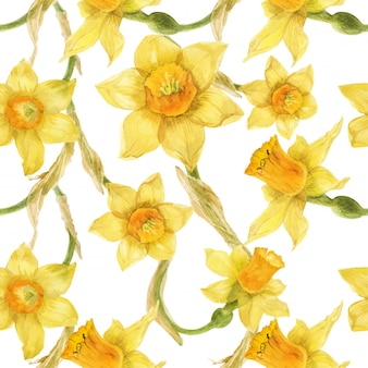 Watercolor realistic floral yellow pattern with narcissus