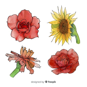 Watercolor realistic flower collection