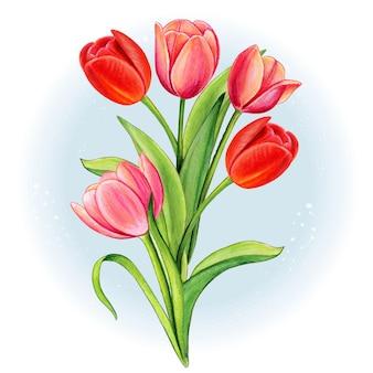 水彩の赤とピンクのチューリップの花束