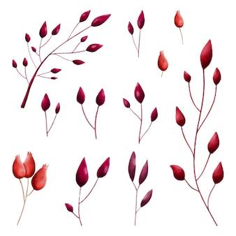 水彩の赤い秋の孤立した葉とベリーのコレクション