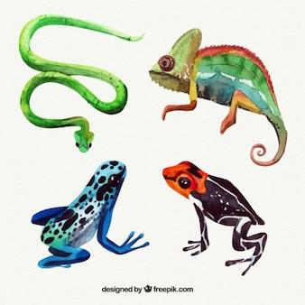 Акварельные рептилии пакет