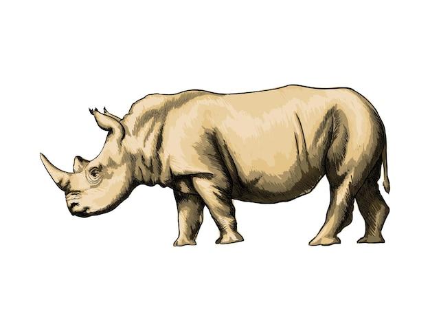 화이트에 수채화 코뿔소