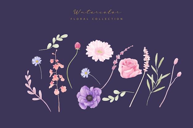 水彩のバラ、アネモネ、ガーベラの花のコレクション