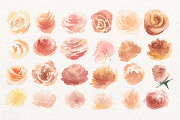 Watercolor rose set