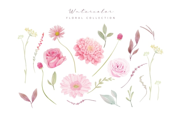 Watercolor roses, dahlia and gerbera flowers collection
