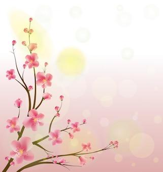 수채화 사쿠라 프레임. 벚꽃 나무 가지와 배경입니다.